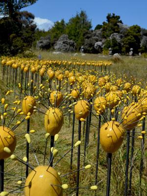 Garden Art - Jenni Ward